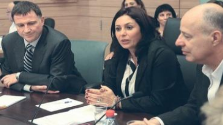 Miri Regev at the Knesset Interior and Environmental Affairs Committees, April 17, 2013. - Photo: Courtesy Knesset